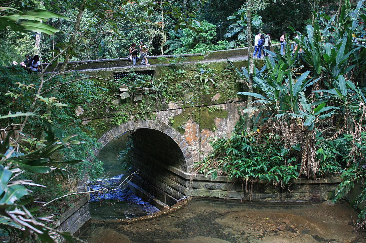 Лес Тижука, старый мост Job de Alcantara