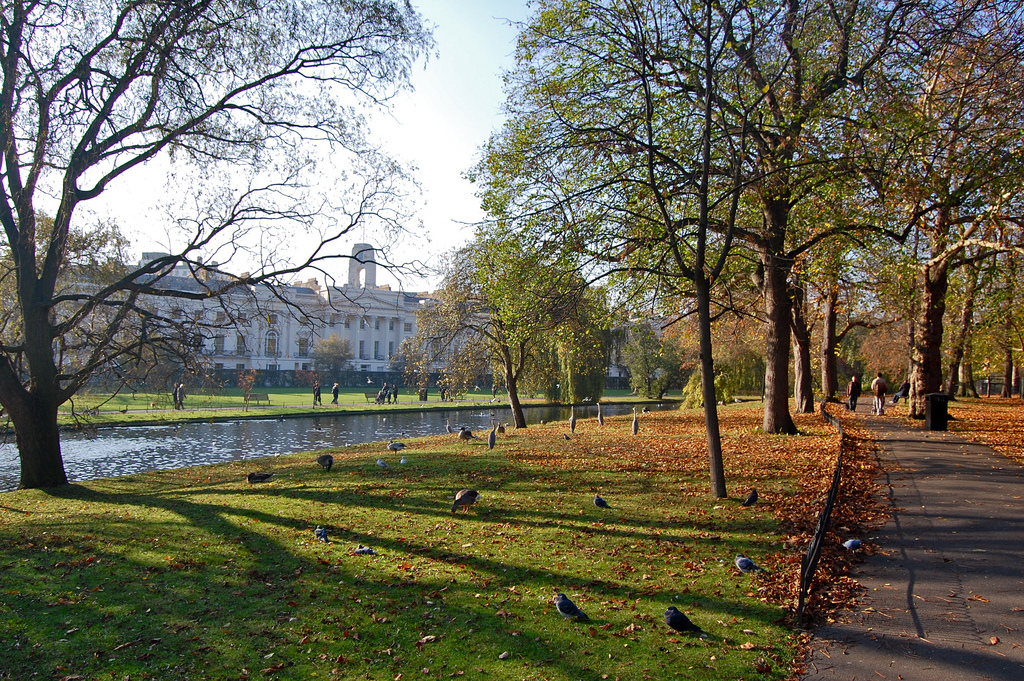 Риджентс-парк — подробное описание, адрес и фото