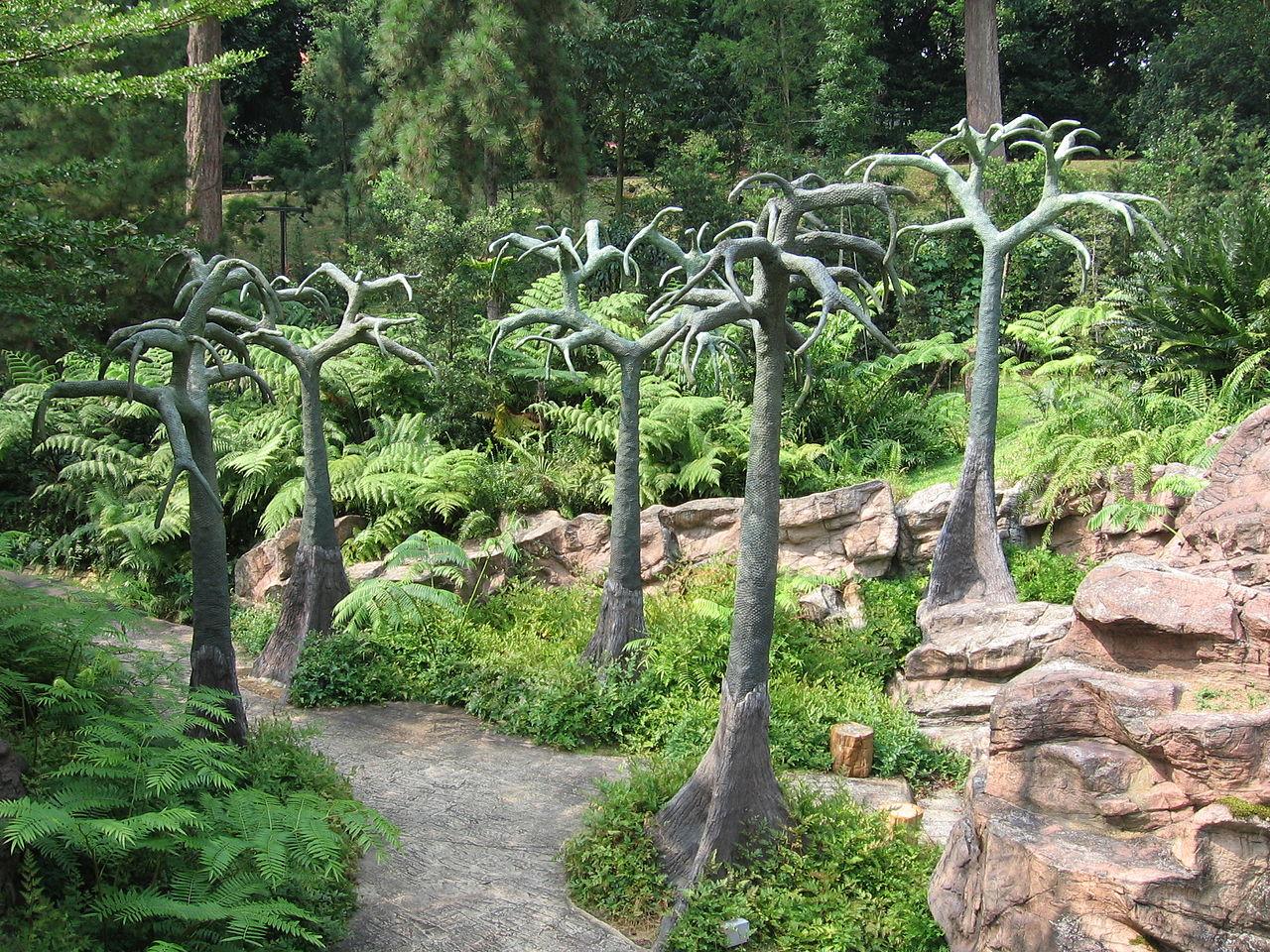 Дорожка ботанического сада Сингапура