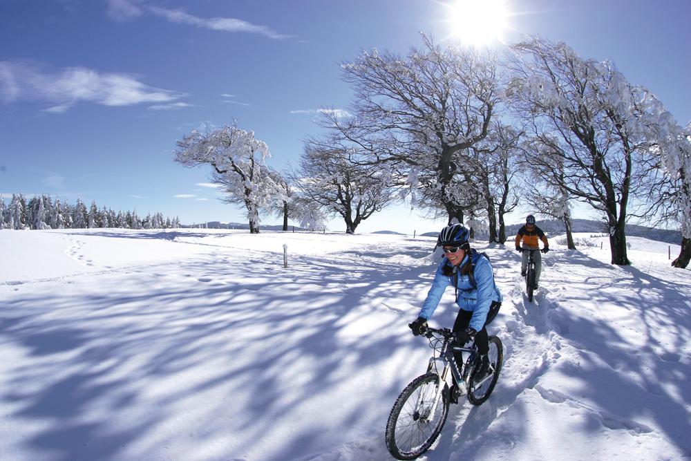Горные велосипедисты в зимнем Шварцвальде