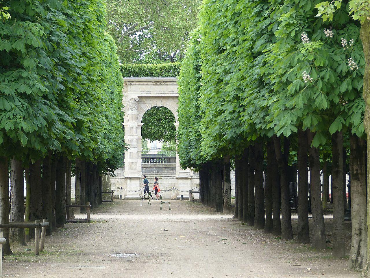 Сад Тюильри, аллея