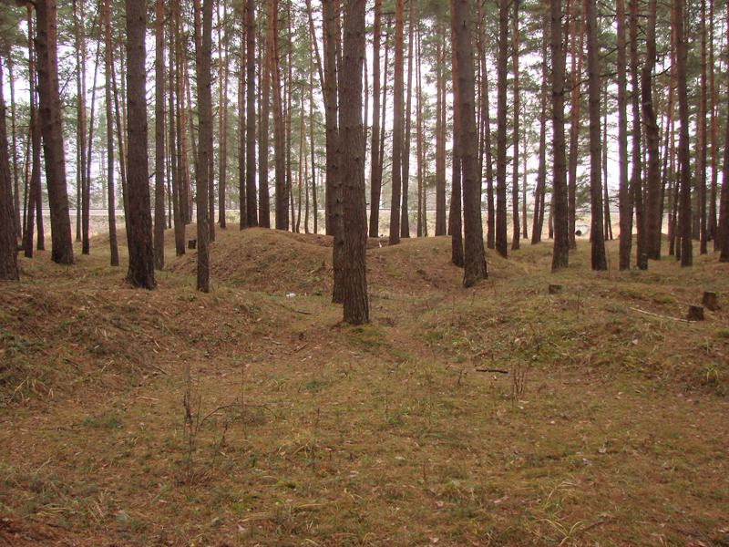 Лесная курганная группа, Гнездовские курганы, Смоленская область