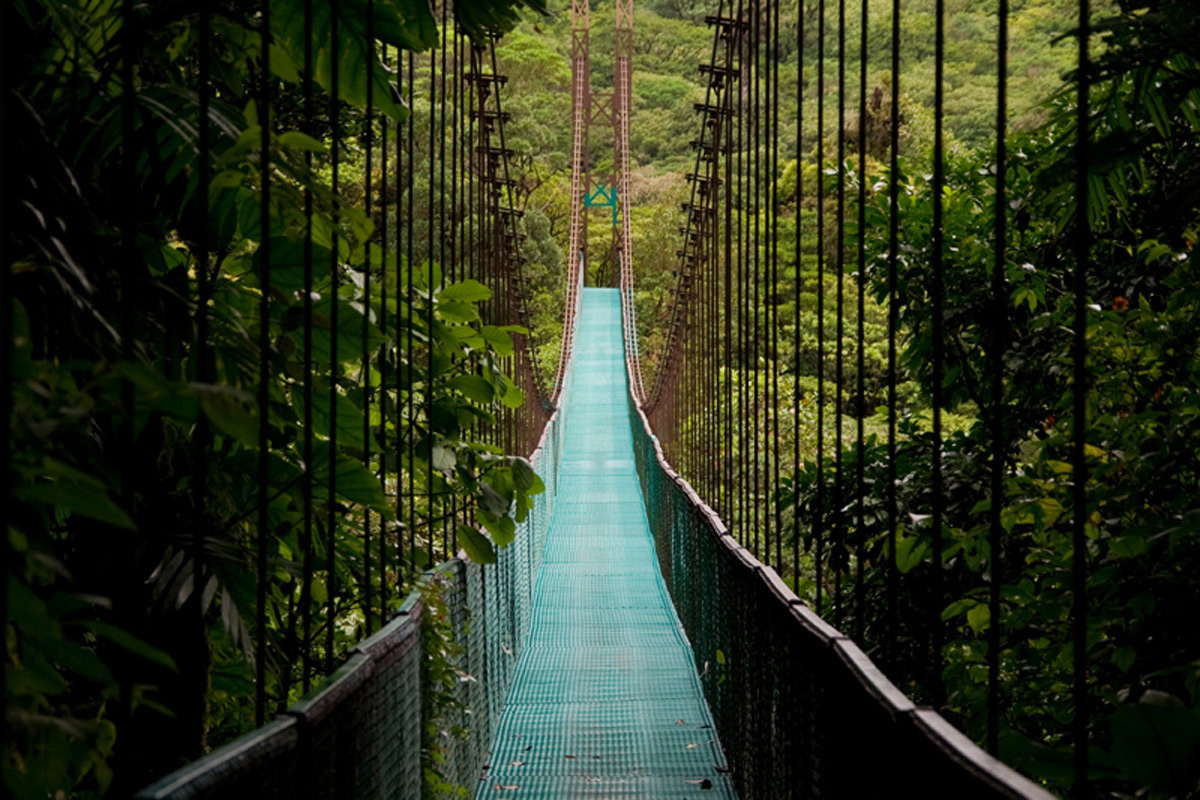 a walking holiday in costa rica by mary novakovich essay Best itinerary for a costa rica family families who need to work around limited school holiday hi mary ann, i'll have our costa rica planner get back to you.