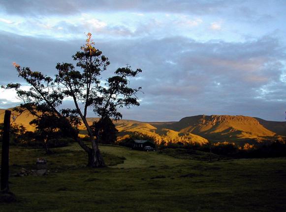 Национальный парк на горе Кения