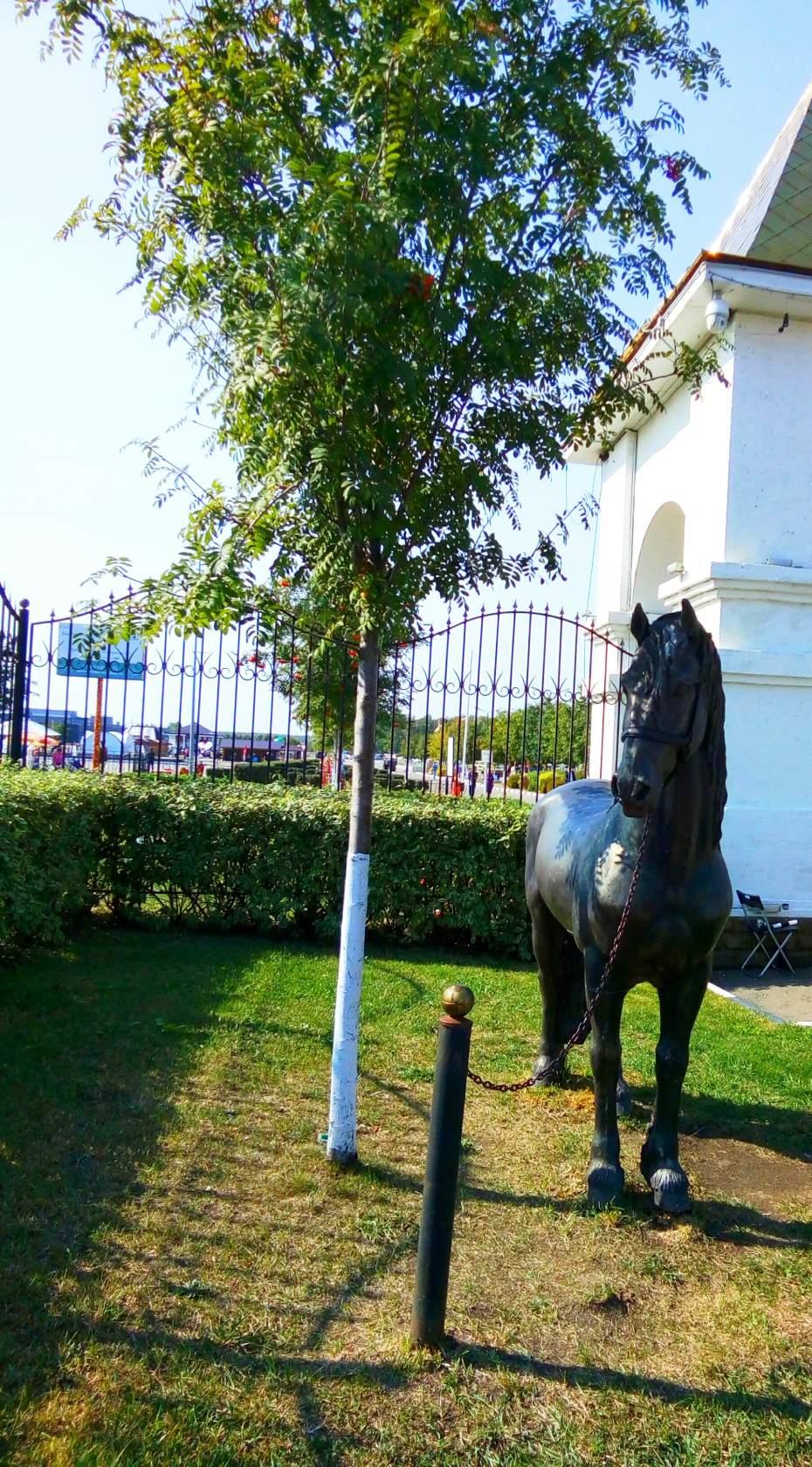 Оформление конного парка «Русь»