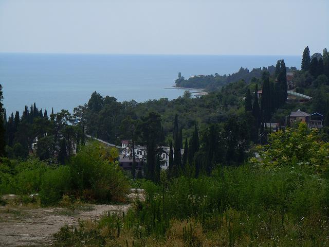 Природа вокруг Новоафонского монастыря, Новый Афон