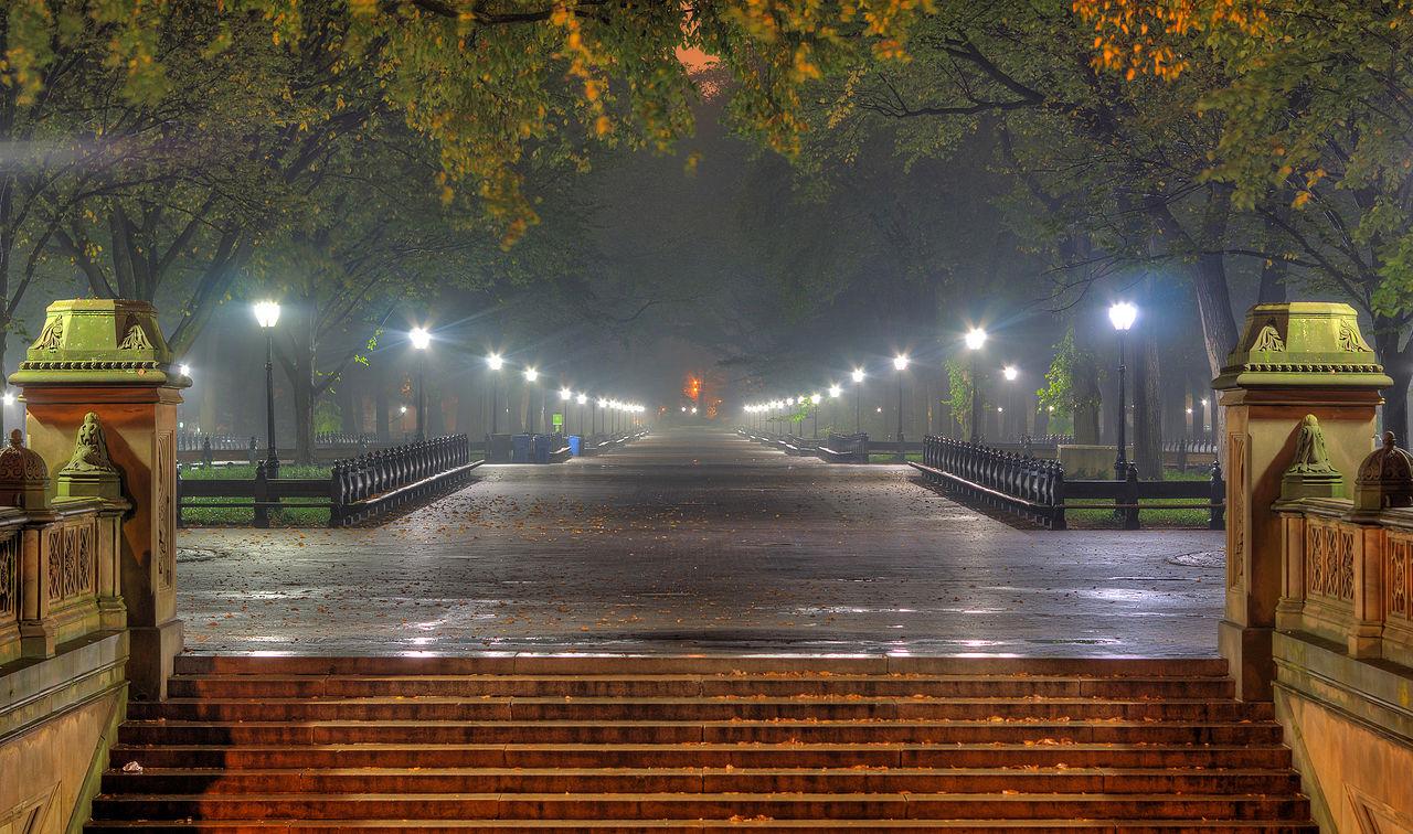 Центральный парк Нью-Йорка туманной ночью