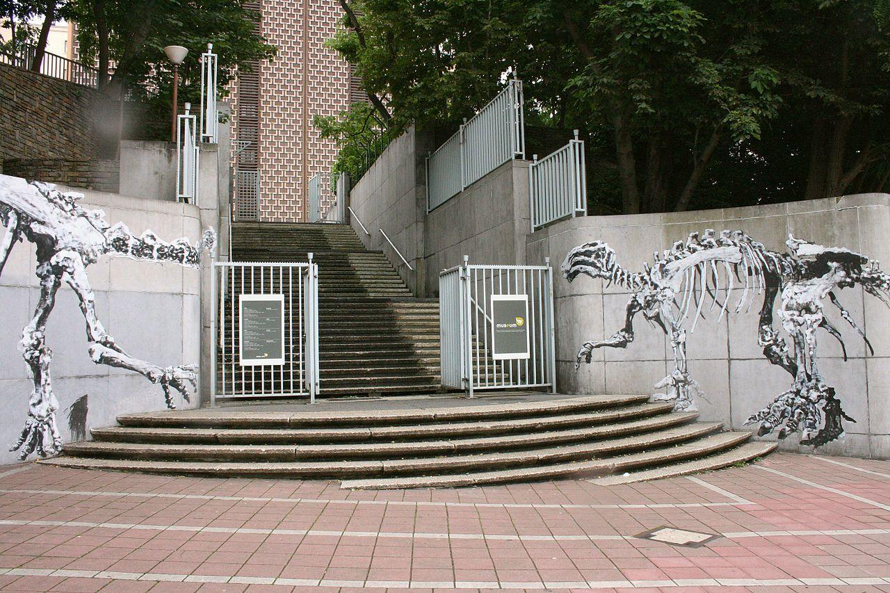 Музей естественных наук в Брюсселе, вход с улицы де Монс