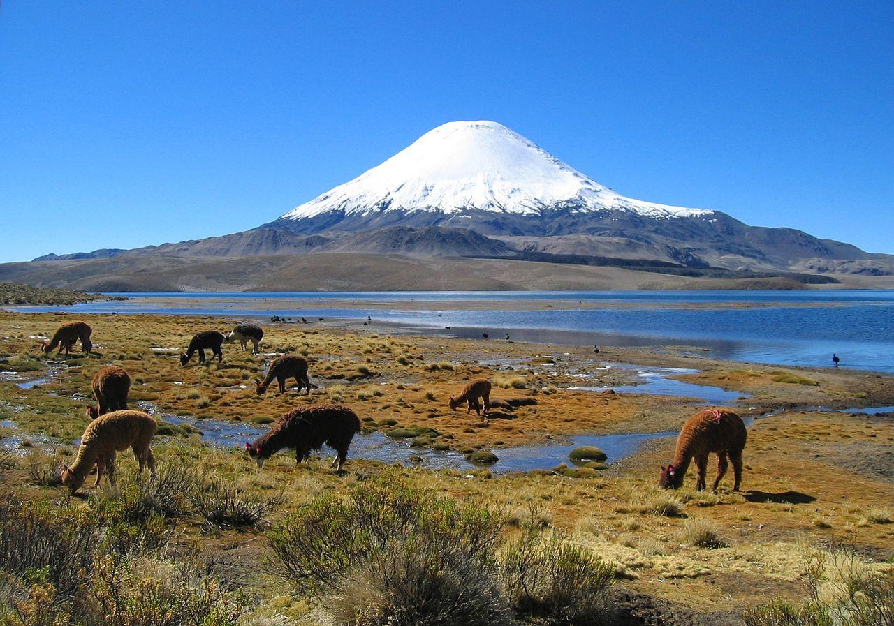 Озеро Чунгара, вид на двойной вулкан Пайячата