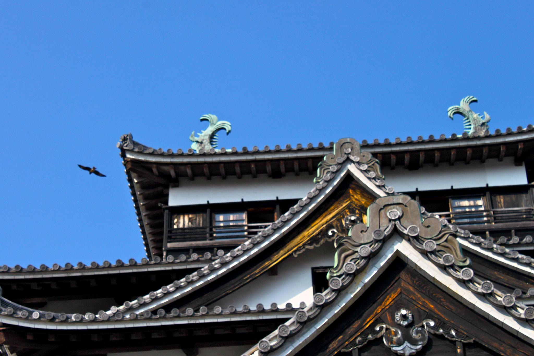 Крыша замка Мацуэ