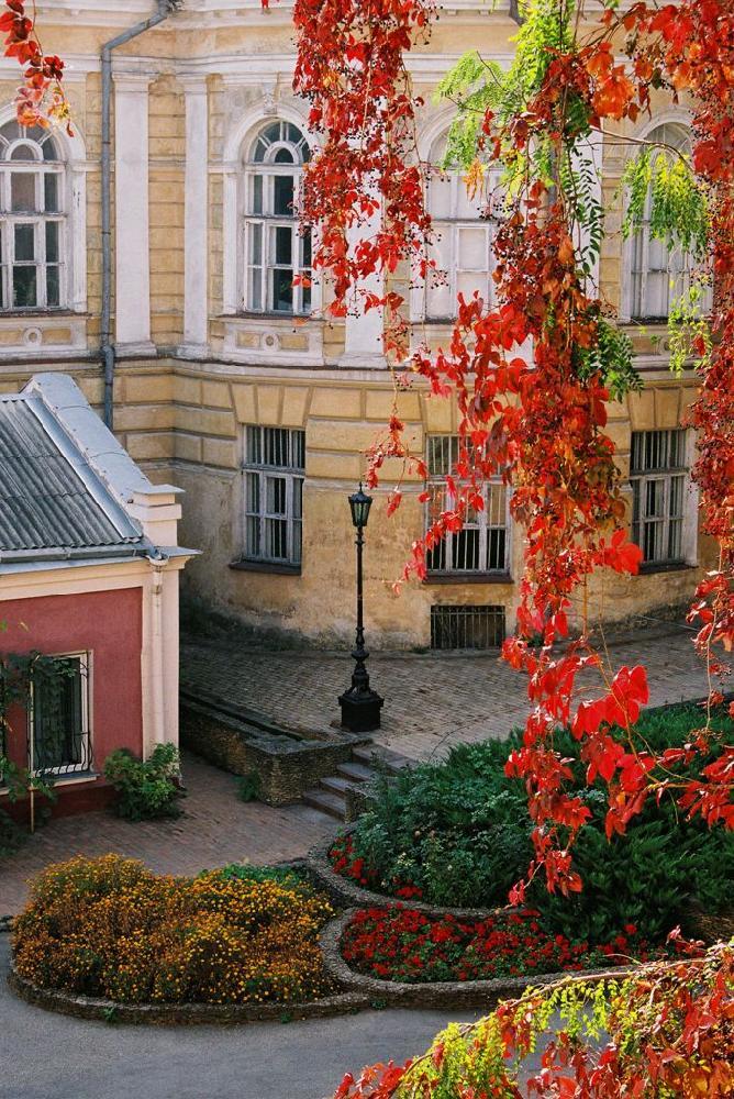 Красочная осень в Одессе