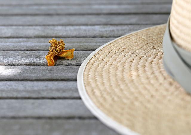Соломенная шляпка.jpg