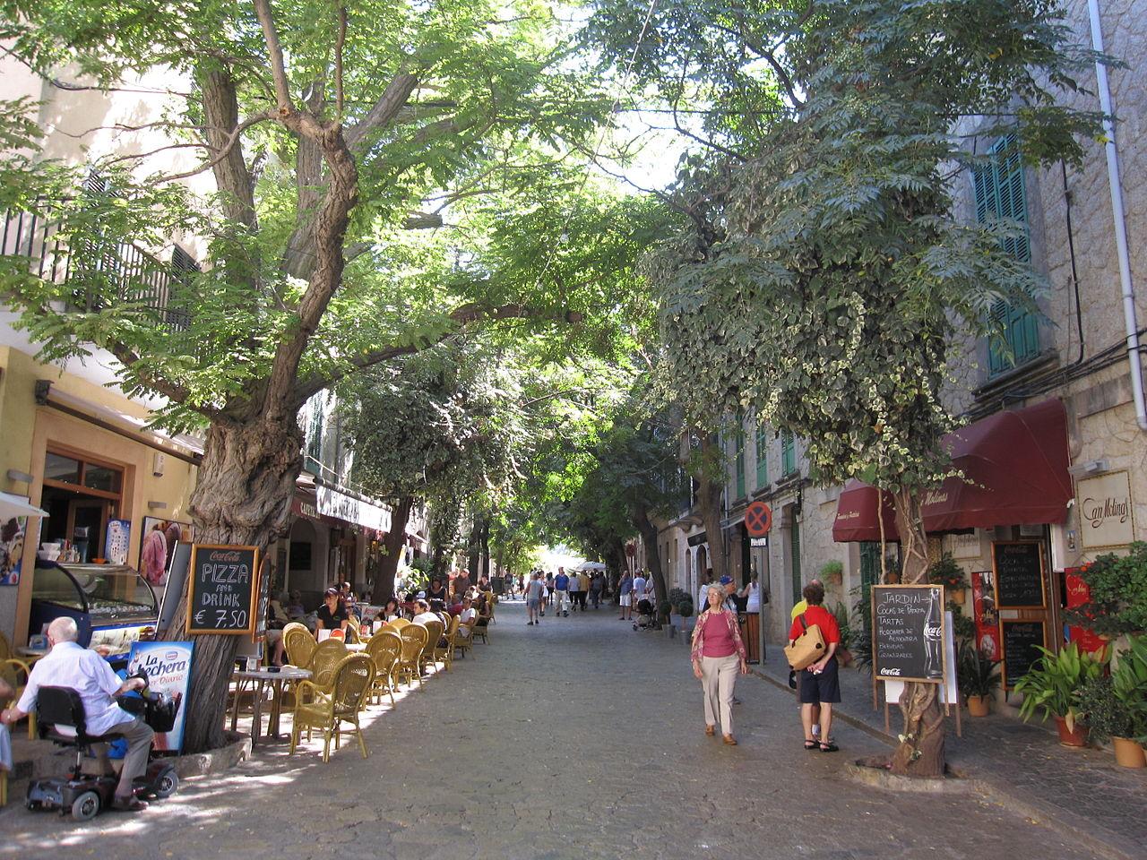 Вальдемоса, одна из центральных улиц