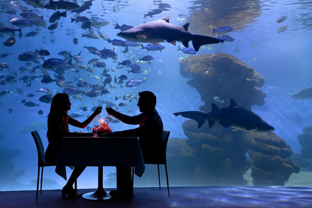 Аквариум Пальма-де-Майорки, романтический ужин