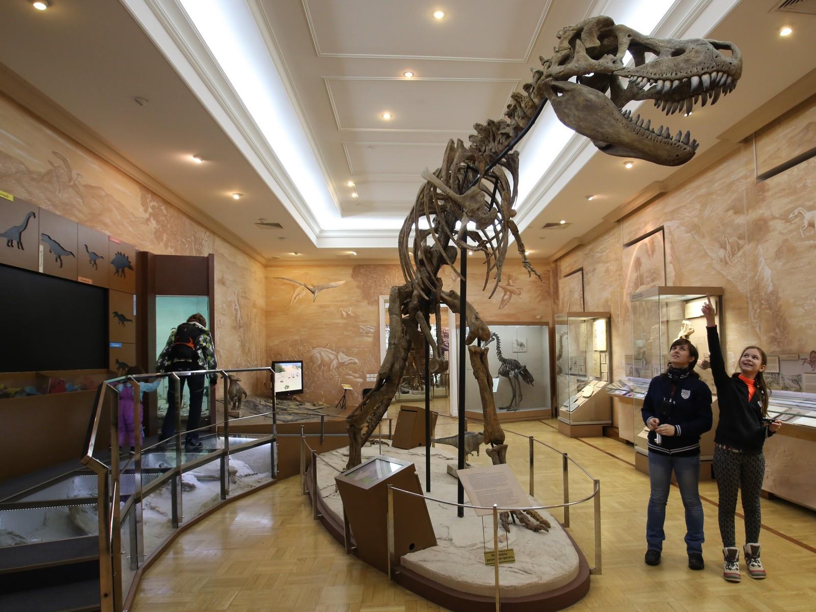 Музей естественной истории Татарстана, зал «Время динозавров»