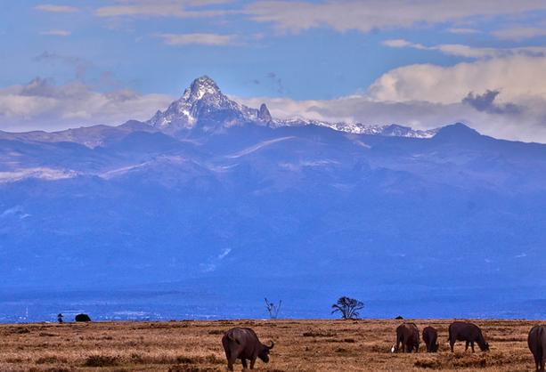 Национальный парк горы Кения
