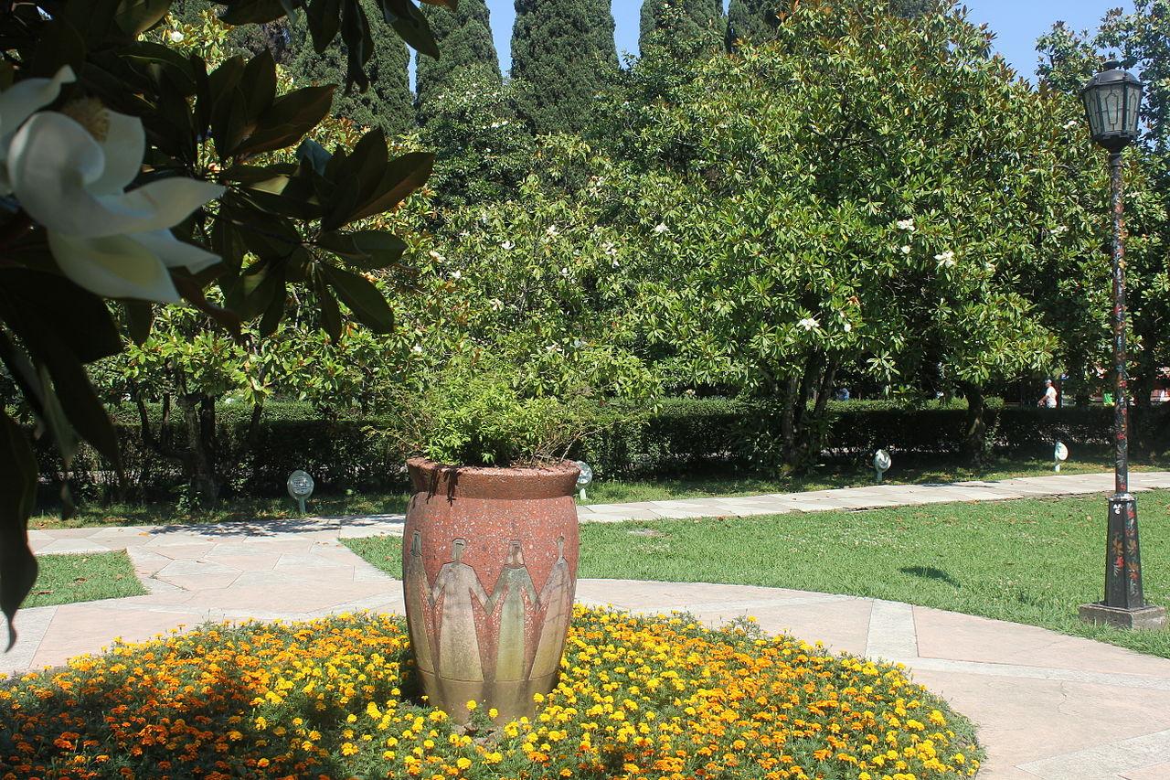 Парк Ривьера в Сочи, магнолии