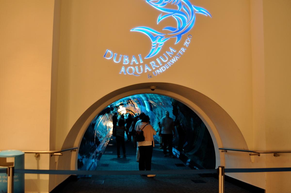 Аквариум в Дубае, вход
