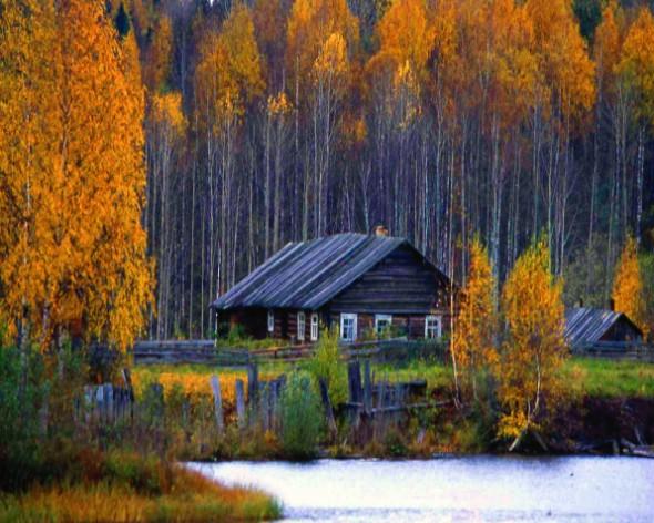 Осень, Кенозерский парк