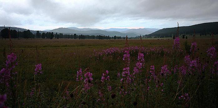 Семинский перевал, Республика Алтай