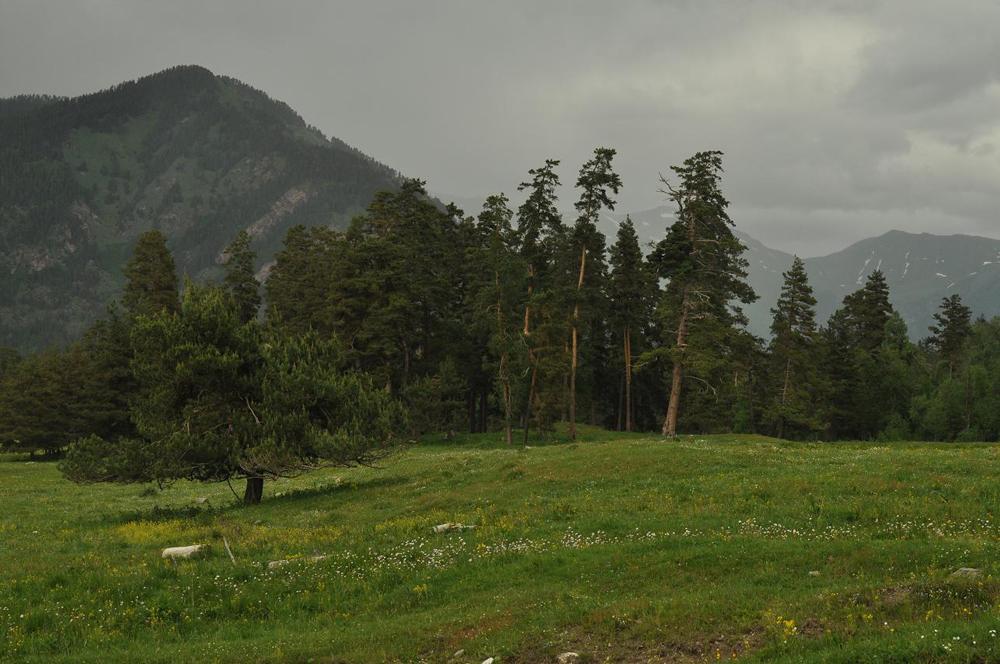 Казино ущелье феодосия кавказского брелок-рулетка металл
