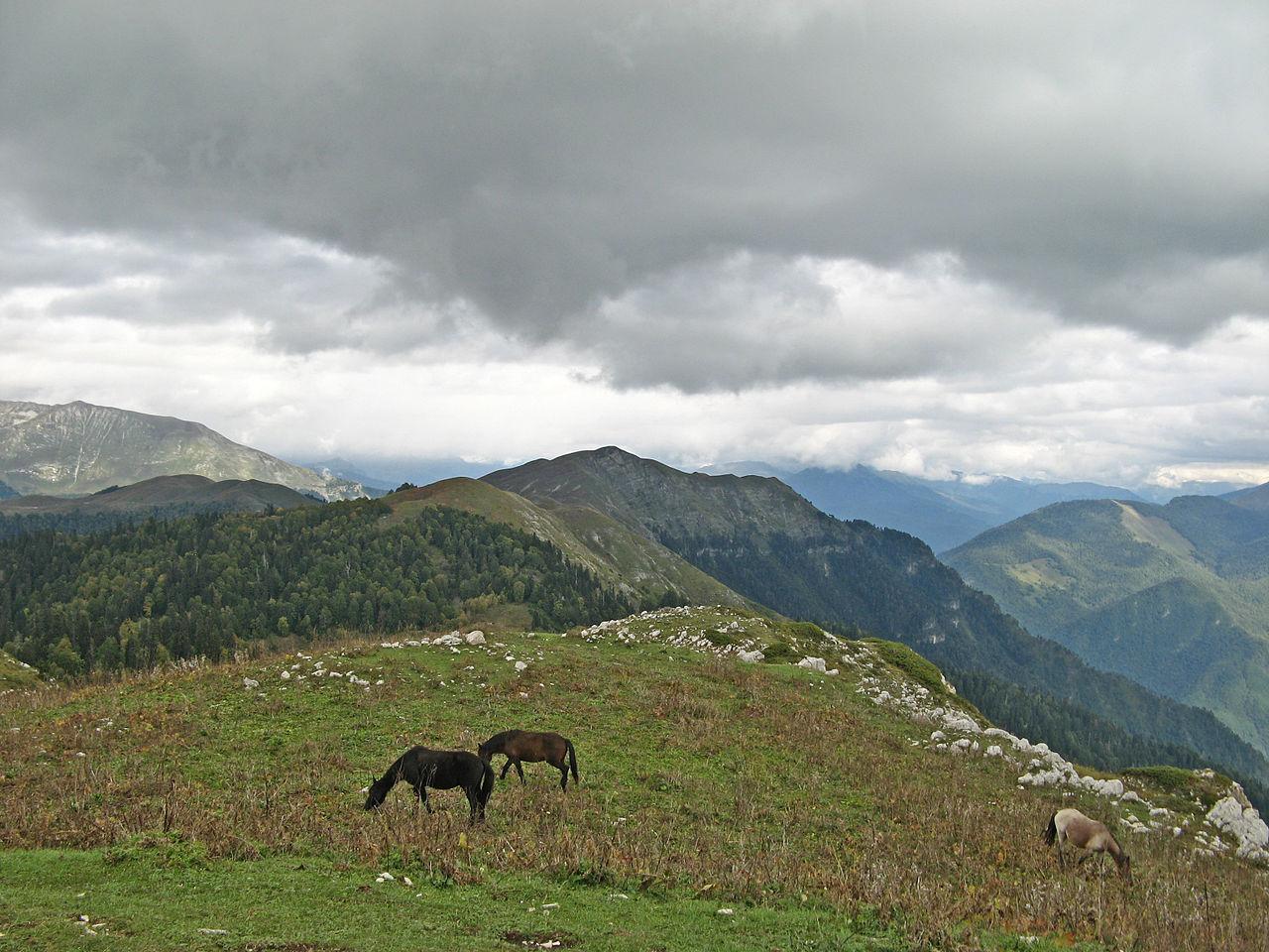Гора Мамдзышха, Гагра