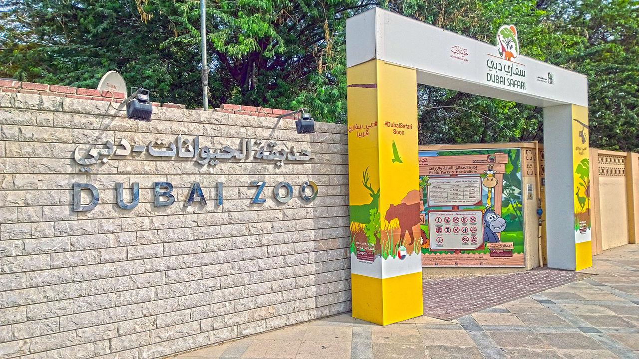 Вхол в Дубайский зоопарк