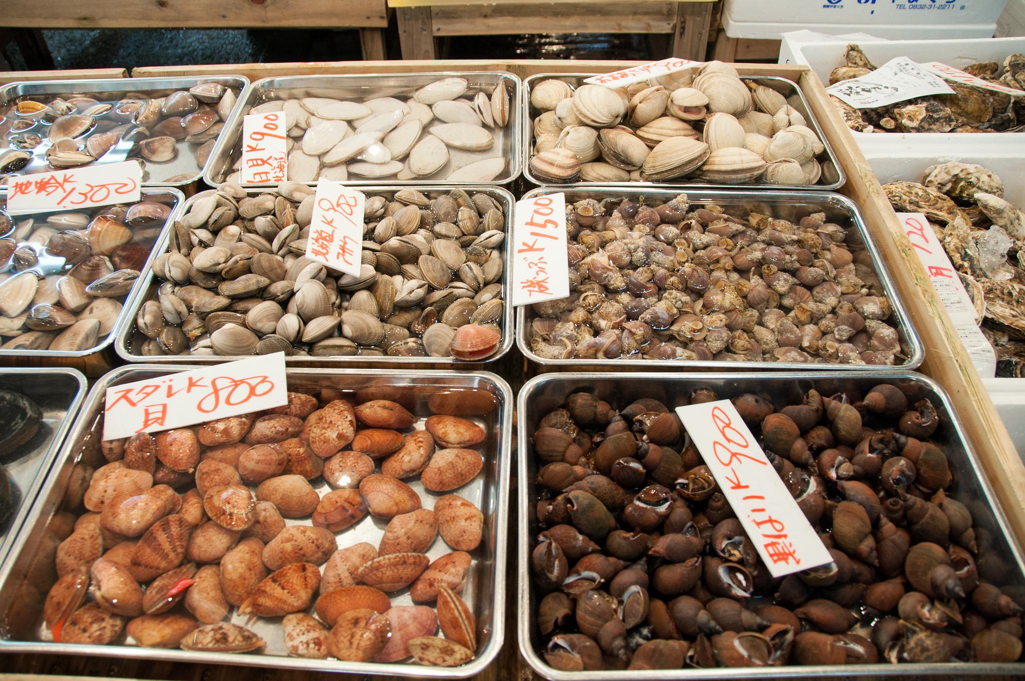 Рыбный рынок Цукидзи, моллюски