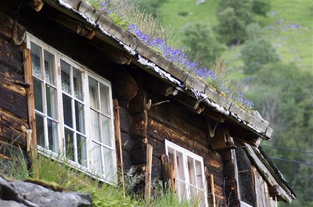 Покрытые мхом немые свидетели истории Норвегии
