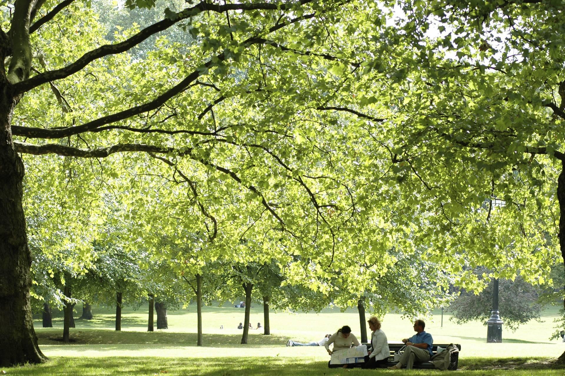 Грин-парк в Лондоне — подробное описание, адрес и фото