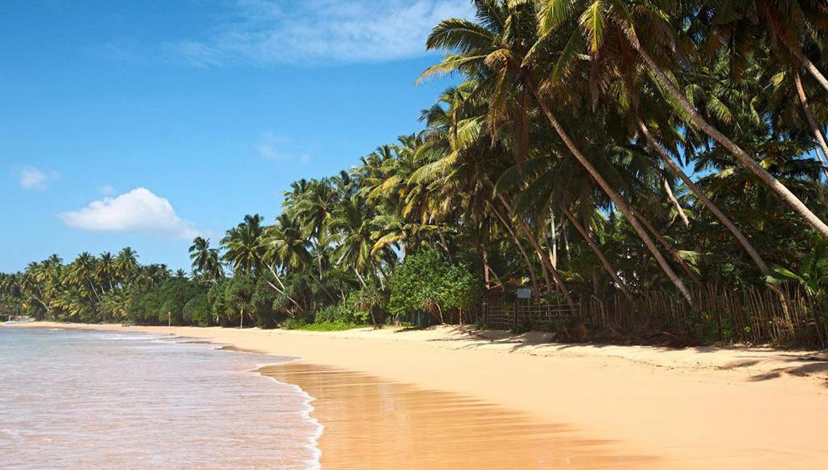 шри-ланка пляж фото