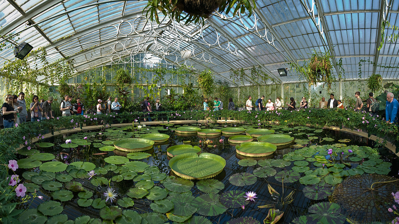 Королевские ботанические сады Кью, дом лилий
