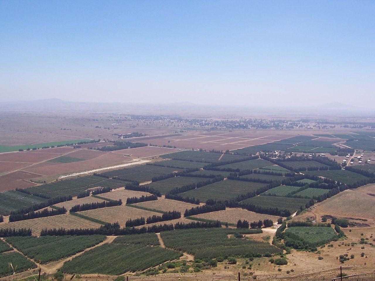 Сирийско-израильская граница в Голанских высотах