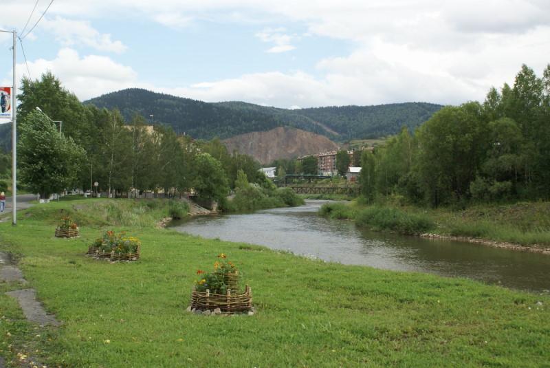 Гадюка во владимирской области фото свою очередь