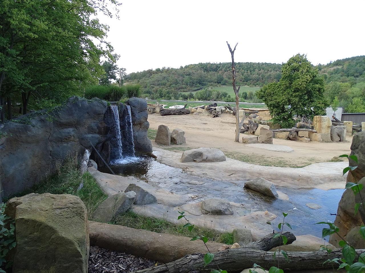 Пражский зоопарк: как добраться из центра, время работы, билеты, официальный сайт, отзывы, фото