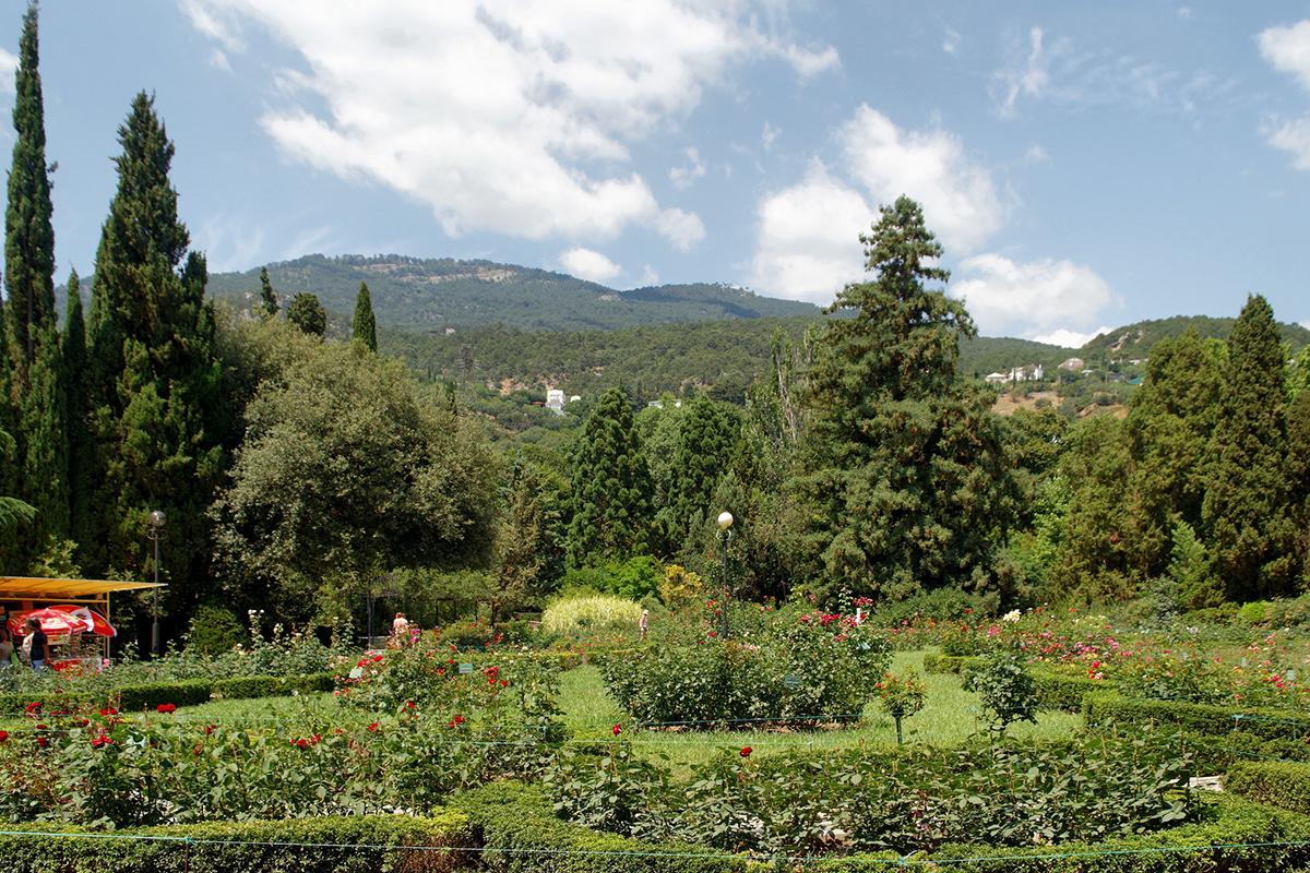 Никитский ботанический сад, Ялта