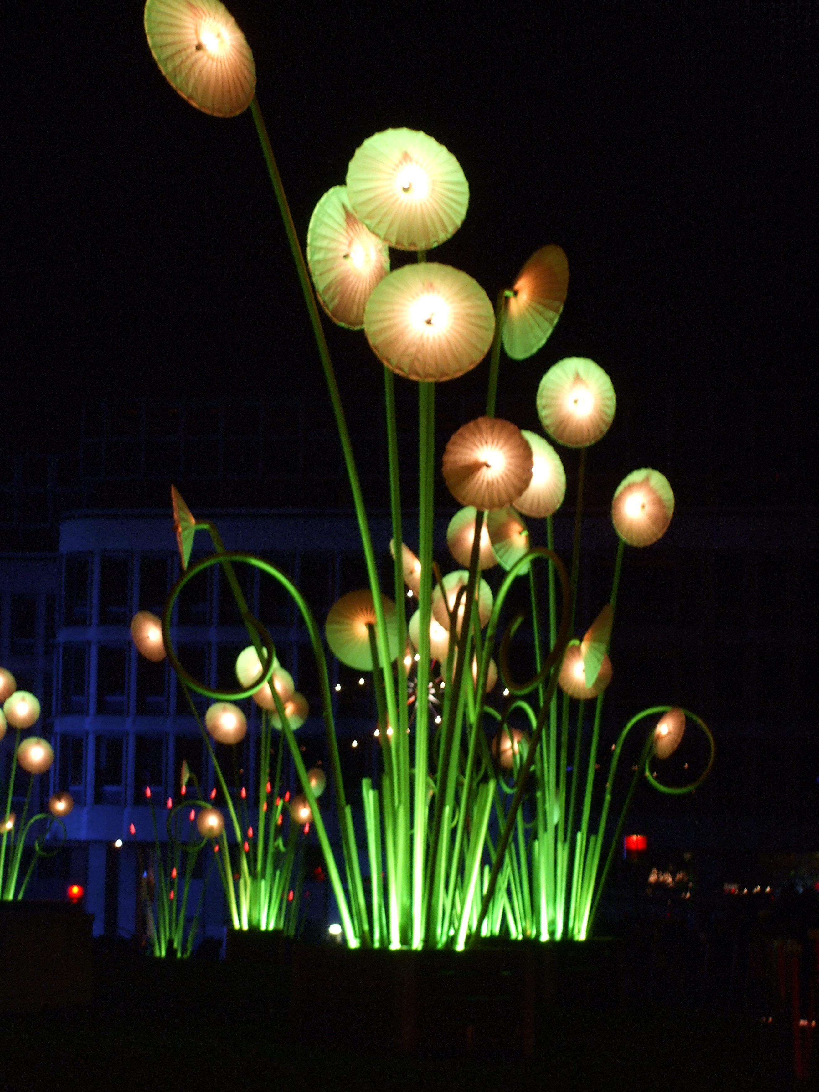 Фантастические цветы в Лионе