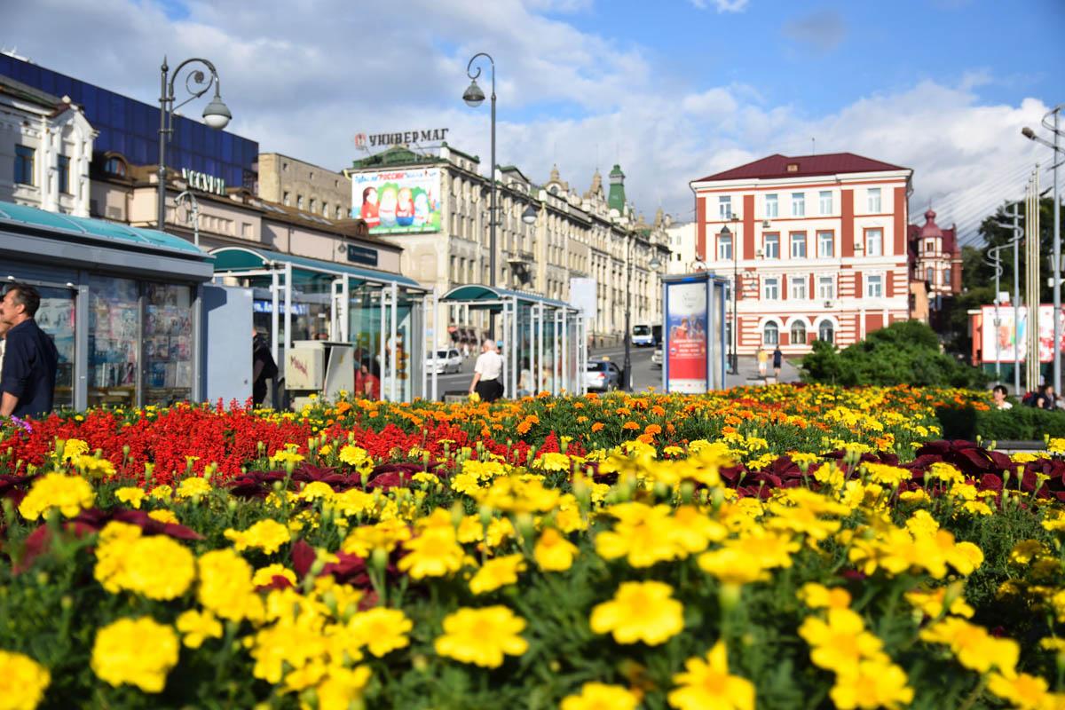Самостоятельная прогулка по Владивостоку Что посмотреть -