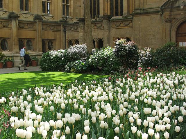 Праздник Вознесения в Оксфорде.jpg