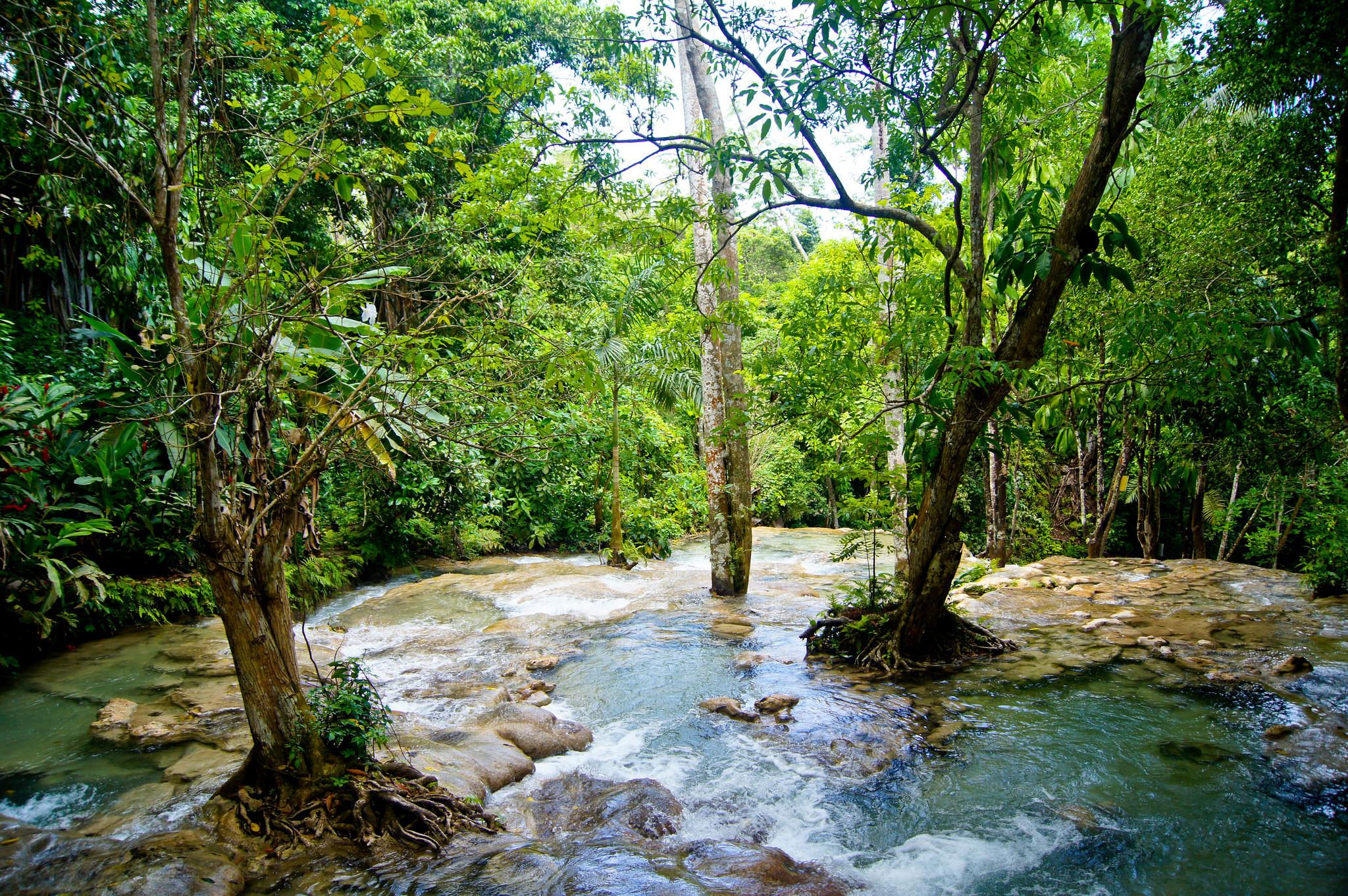Водопады Даннс-Ривер, рядом с Очо-Риос