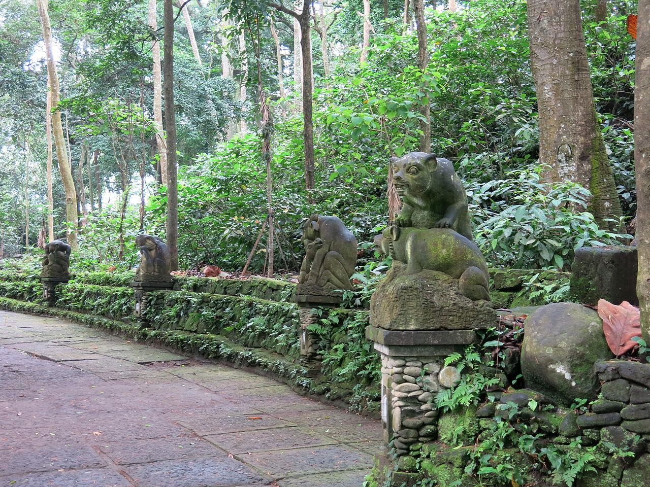 Лес обезьян в Убуде, Индонезия