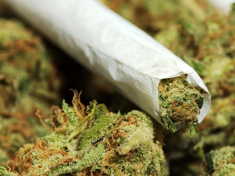 Как курить коноплю траву сорт конопли не пахнет