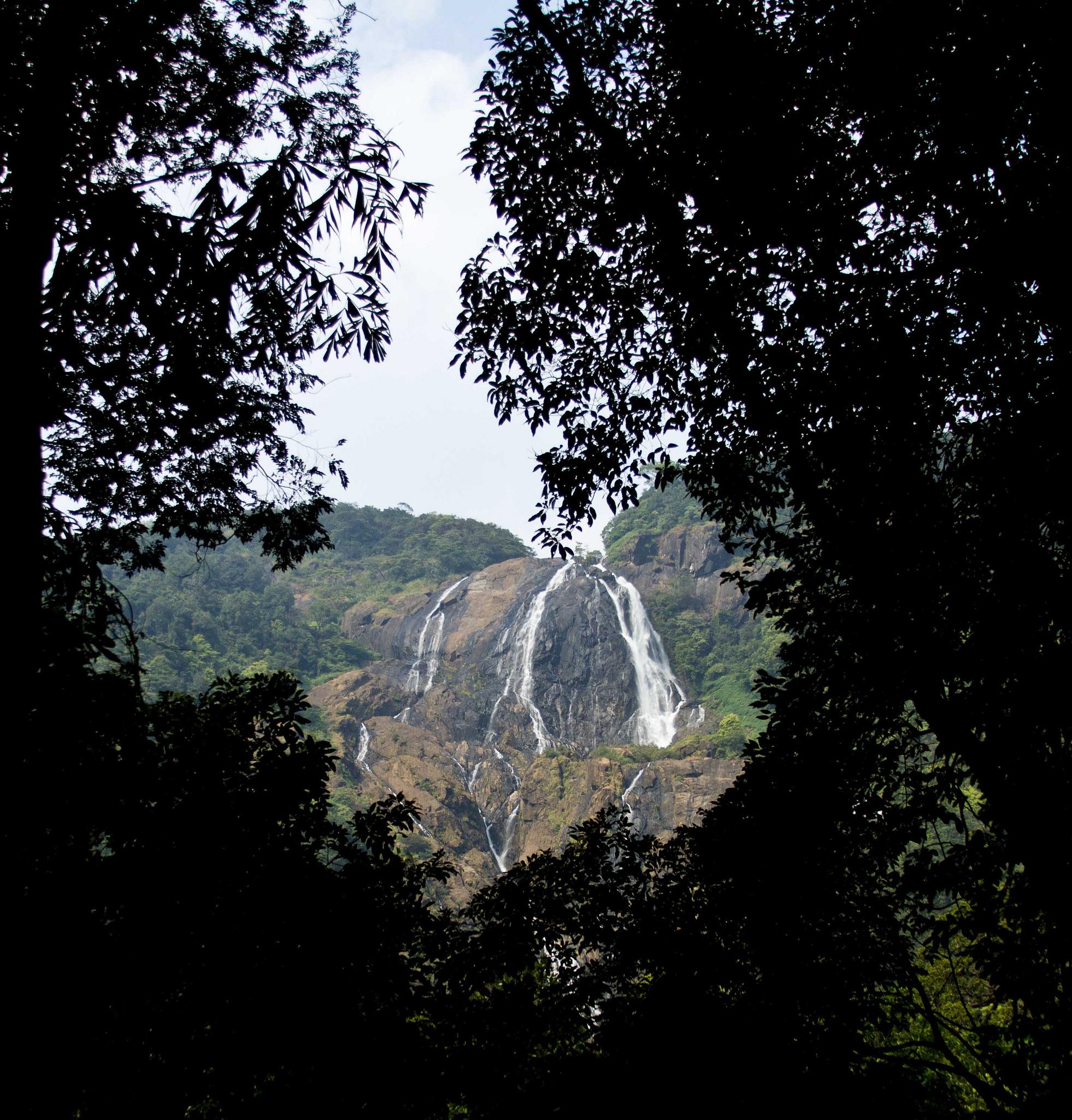 Вид на индийский водопад Дудхсагар, Индия