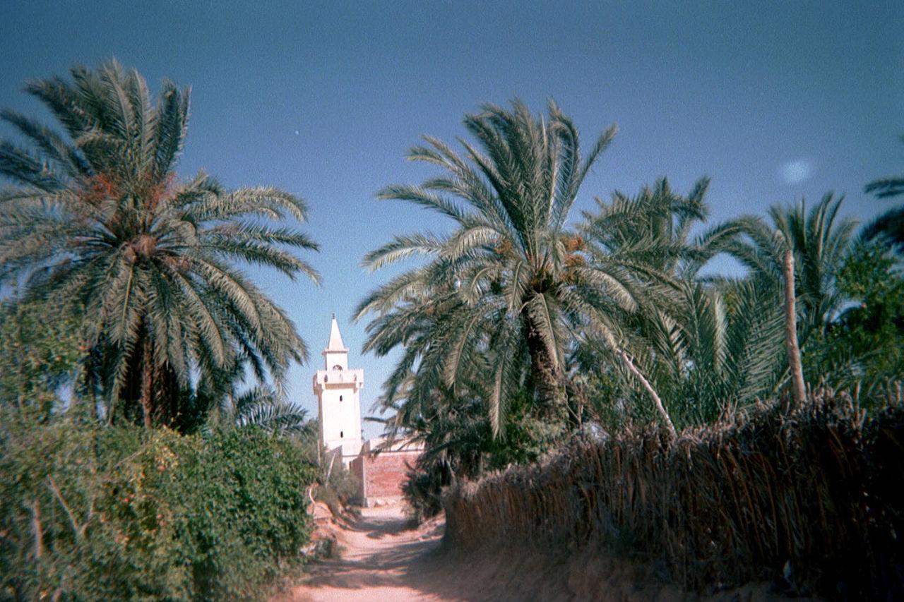 Пустыня Сахара в Тунисе, мечеть в городе Дуз
