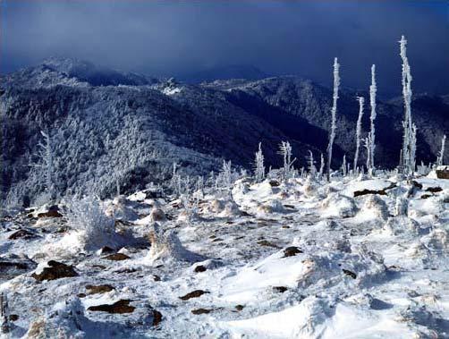 Заснеженные горы Чирисан в Южной Корее.jpg