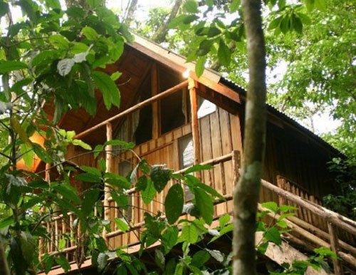 Bayrams Tree Houses.jpg