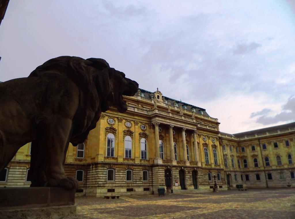 Лев на входе во двор Королевского дворца, Будайская крепость, Будапешт