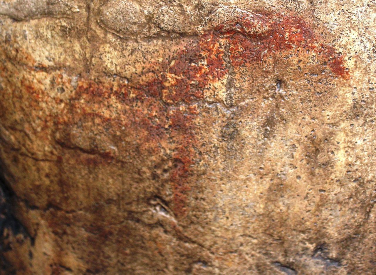 Игнатьевская пещера, изображение лося