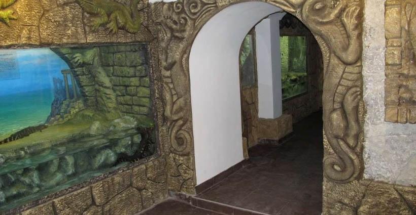 Залы крокодиловой фермы, Ялта