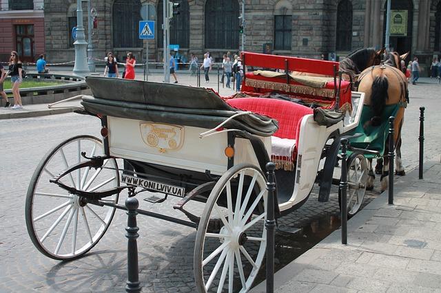 Coach-3390106 640.jpg